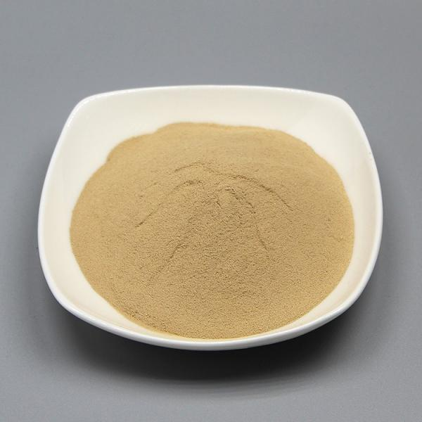 Solid Fermenter/Bio Organic Fertilizer Production
